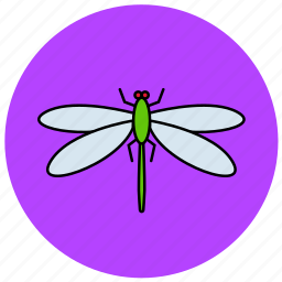 dragonfly, fly, insects, nature icon
