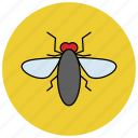 fly, house fly, insects, pest icon