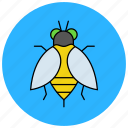 bee, bug, fly, honey, honeybee, insects icon
