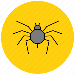 bug, insects, pest, spider, web icon