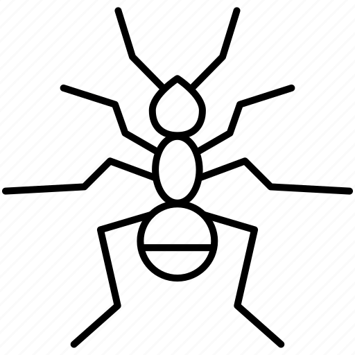 ant, fly, insects, pest icon