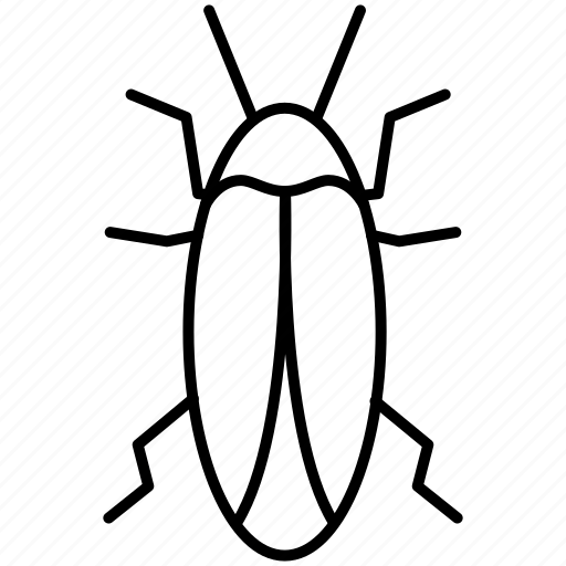 cockroach, fly, insects, pest icon