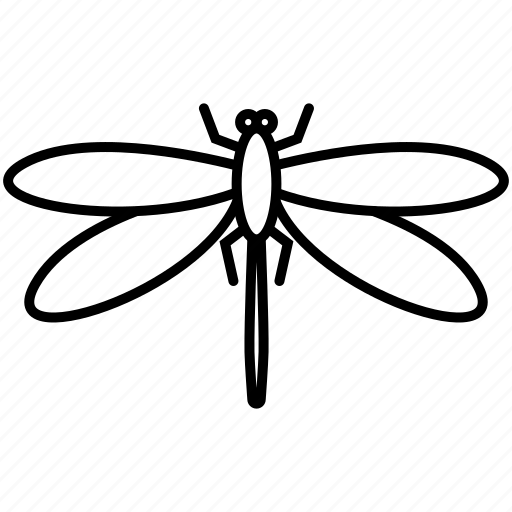 dragonfly, fly, insects icon