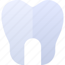 biology, doctor, health, tooth icon