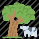 enviroment, farm, nature, planting, smart, cow
