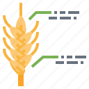 data, farm, nature, smart, wheat icon