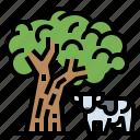 cow, enviroment, farm, nature, planting, smart