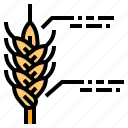 data, farm, nature, smart, wheat