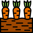 agriculture, carrots, farming, garden, nature icon