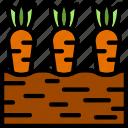 agriculture, carrots, farming, garden, nature icon