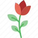 rose, plant, flower, garden, soil icon