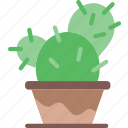cactus, flower, garden, plant, soil icon