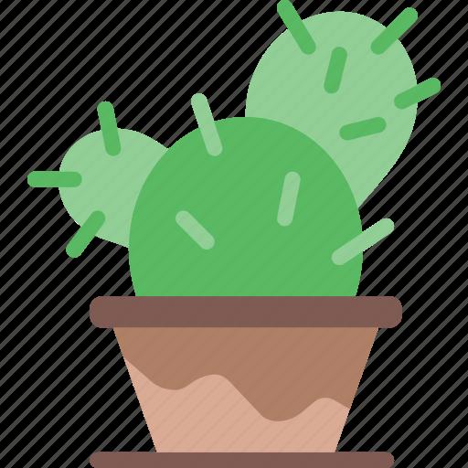 cactus, flower, garden, plant, soil icon