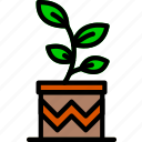flower, garden, plant, pot, soil