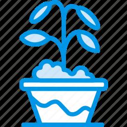 flower, garden, plant, pot, soil icon