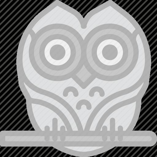 holidays, owl, travel icon