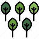 forest, outdoors, trees, wild icon