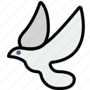 dove, faith, pray, religion icon