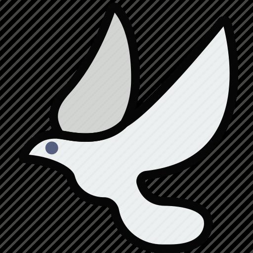 dove, faith, pray, religion icon