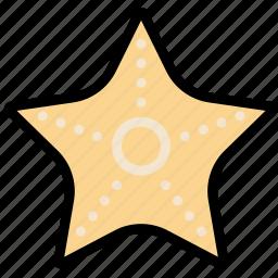 journey, starfish, travel, voyage icon