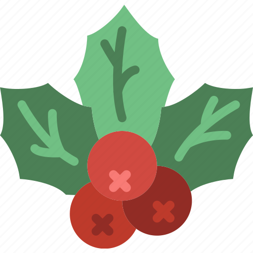 christmas, holiday, mistletoe, winter icon