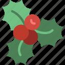 holiday, mistletoe, christmas, winter