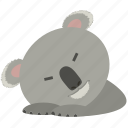 chat, dreaming, koala, sleep, smiley icon