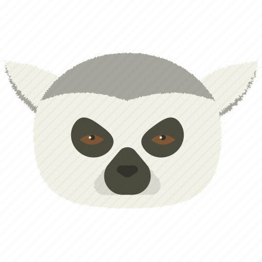 calm, chat, indifferent, lemur, smiley icon