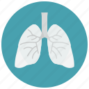 biology, health, lungs, organ, smoking icon