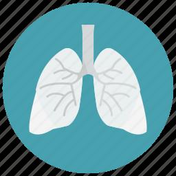 biology, health, lungs, organ, smoking icon