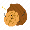 hetao, nut, snack, walnut icon