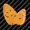 nut, pinaster, pine, snack icon