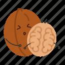 nut, snack, thin, walnut icon