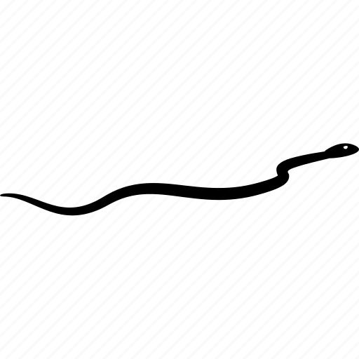 moving, slitter, snake icon