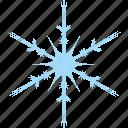 winter, frost, snow, snowflake