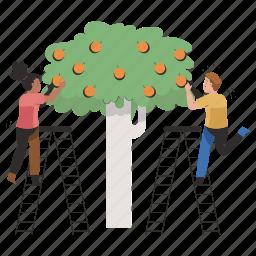 food, equality, gender, ladder, man, woman, fruit