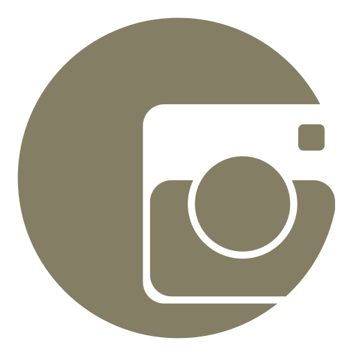 camera, instagram, moments, photo, share, smartphone icon