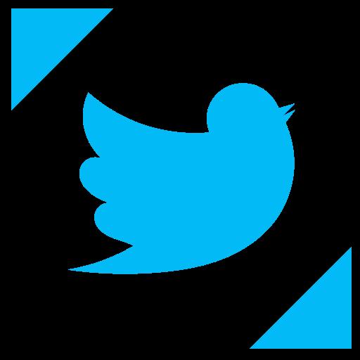 bird, profile, tweet, twitter icon