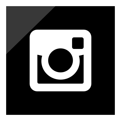 intagram, logo, media, social icon