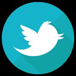 bird, network, socialnetwork, tweet, twitter icon