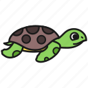 sea, ocean, animal, tortoise, nature, turtle