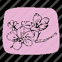 asian, cherry blossoms, feminine, floral, flowers, korean