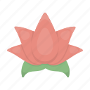 attribute, flower, lotus, plant, salon, spa