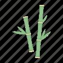 attribute, bamboo, plant, salon, spa