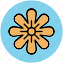 bloom, blossom, daisy, flower, nature, petal flower, spring flower icon