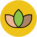 bloom, blossom, flower, flower bud, nature, tulip, tulip bud icon