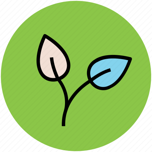 bloom, blossom, flower petals, leaves, petals, plant icon