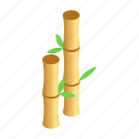 bamboo, isometric, nature, plant, spa, sticks, stroke icon