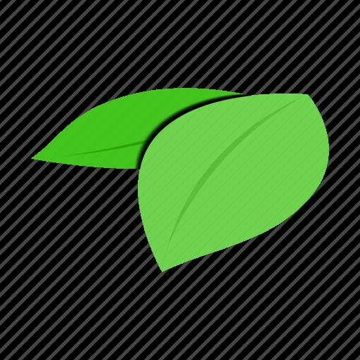 design, eco, isometric, leaves, natural, organic, spa icon