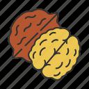 culinary, ingredient, nut, spice, taste, walnut, flavor icon